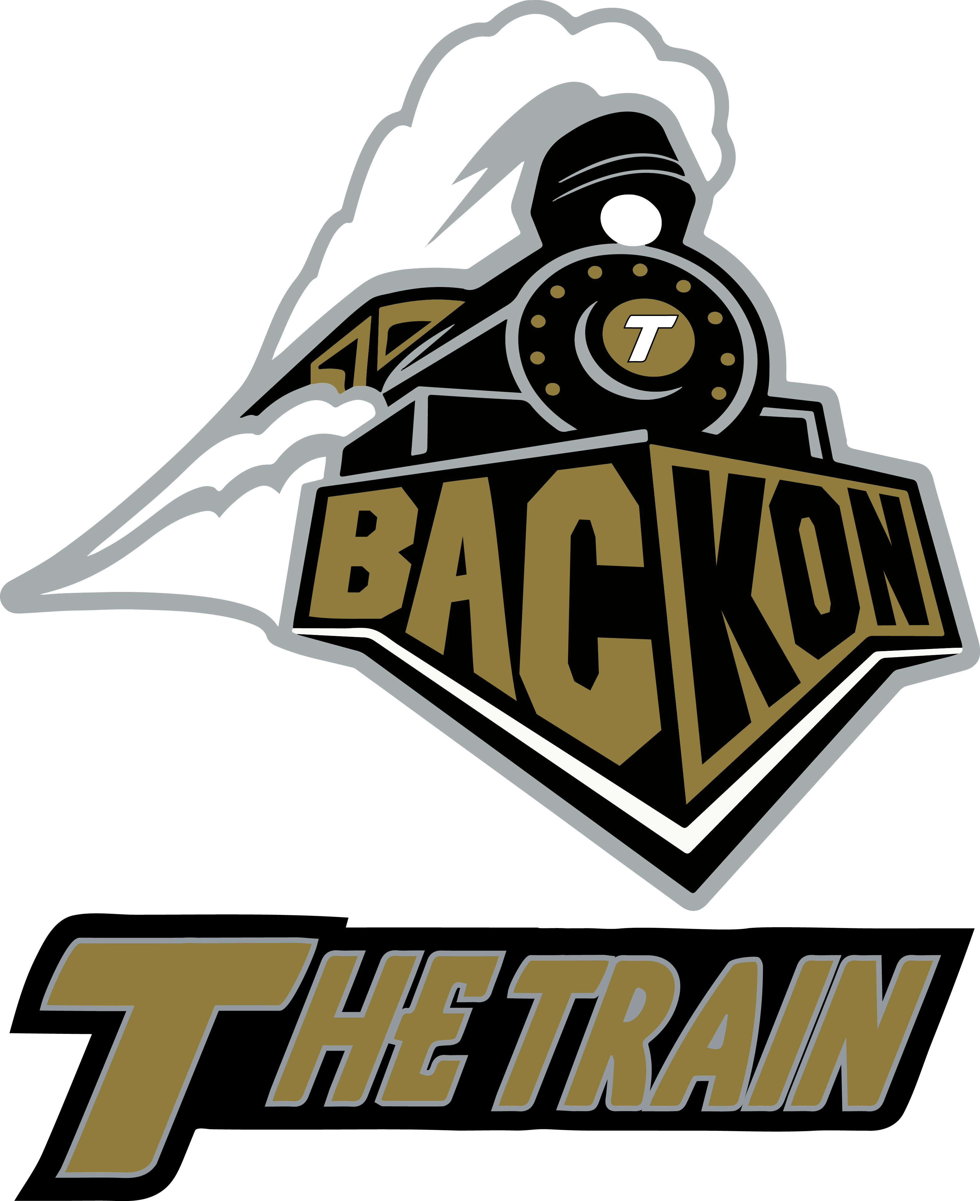 Back On The Train | Purdue University Boilermakers + Phish Unisex T-Shirt
