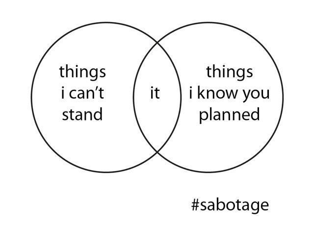 Venn Diagram: Beastie Boys Sabotage