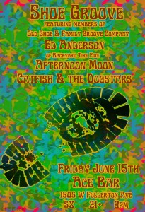 Preview: Shoe Groove, Ed Anderson, Afternoon Moon & Catfish & The Dogstars @ Ace Bar 6/14/12